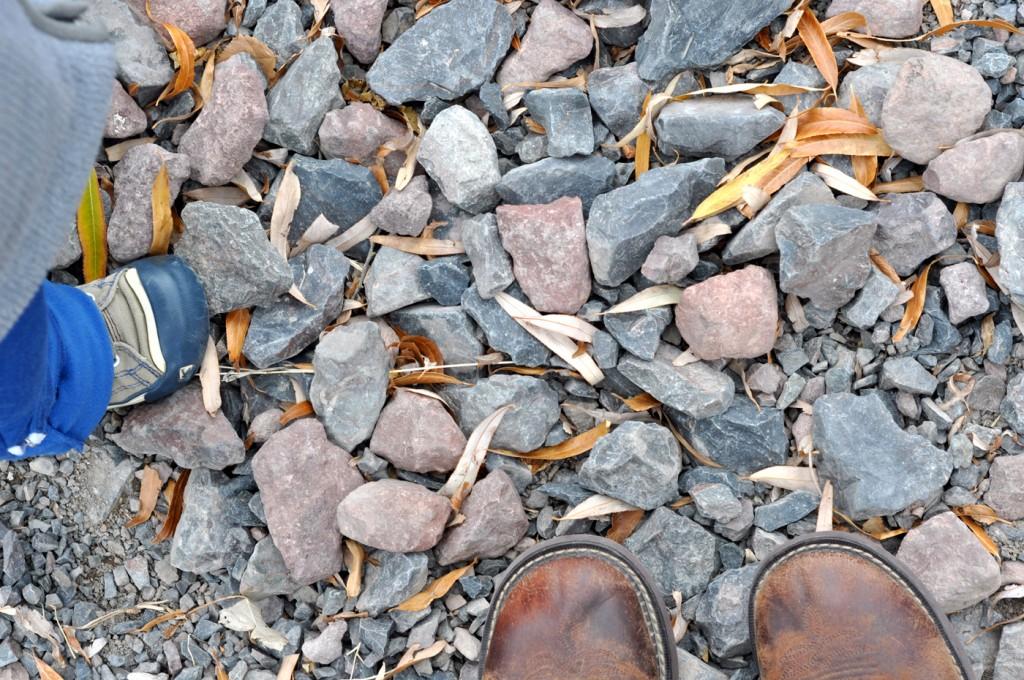 2015 Fall rocks