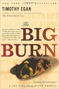 The Big Burn copy